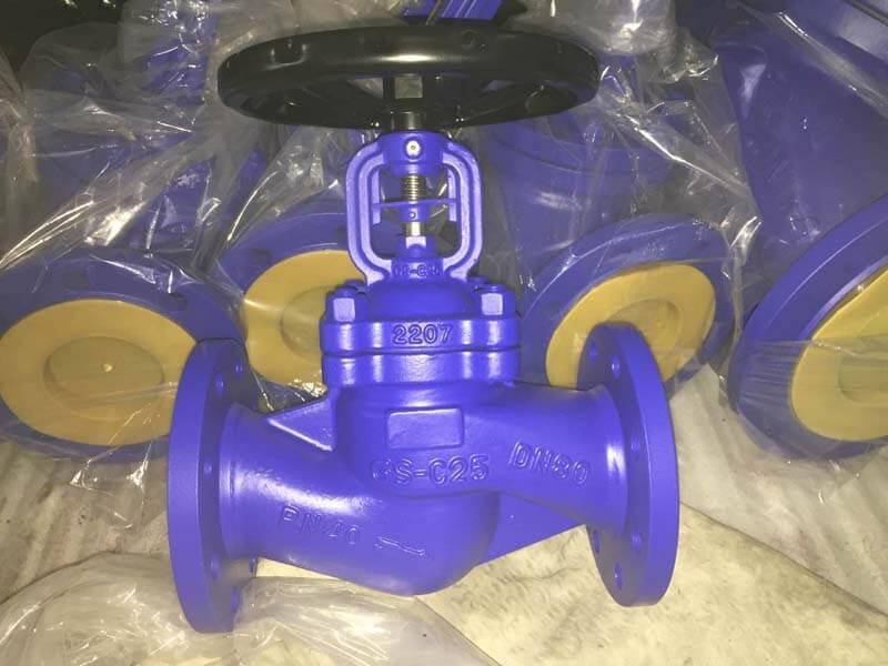 DIN standard bellow seal globe valve 1.jpg