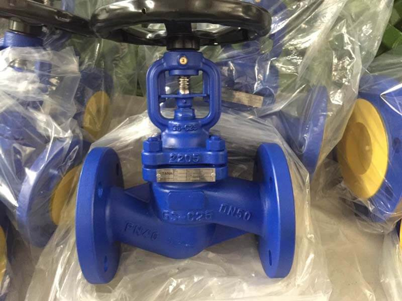 DIN standard bellow seal globe valve 4.jpg
